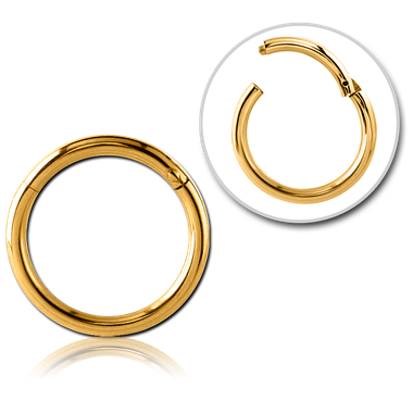 316L Gold PVD coated hinged segment hoop (GPHCSR)