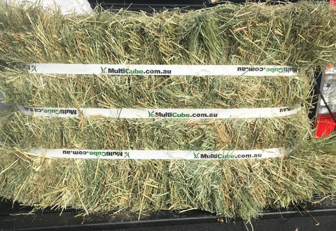 TEFF HAY COMPRESSED