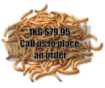 MEALWORMS 1KG BULK (CALL US TO PLACE AN ORDER)