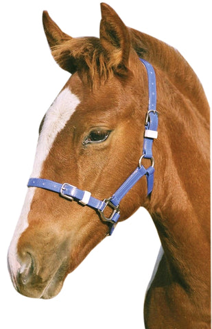 PVC HEADSTALL FOAL/MINI PINK