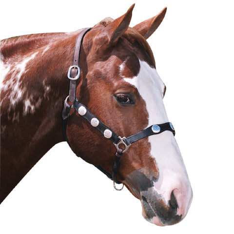 SCALLOPED WESTERN HEADSTALL COB