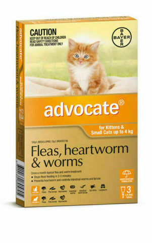 ADVOCATE CAT UP TO 4KG (3 PACK)
