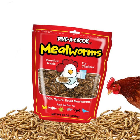 DAC MEALWORMS Dried 850g