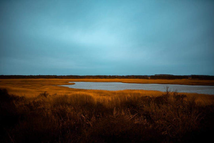 Nationaal Park Lauwersmeer - Bram Art Photography