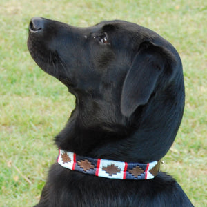 Polo Dog Collar - Navy/pale blue/red stripe