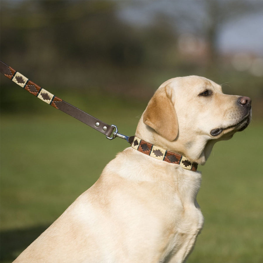 Polo Dog Lead - Copper/beige/green stripe