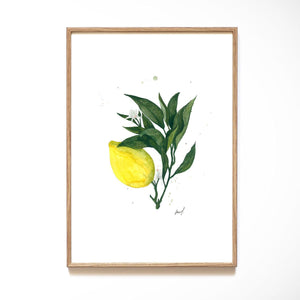 KUNSTDRUCK – LEMON