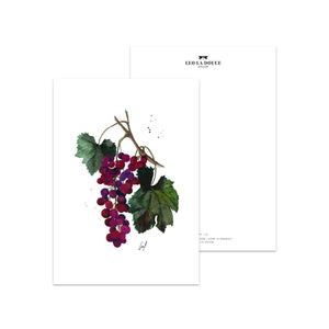 POSTKARTE - GRAPES