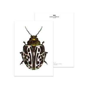 POSTKARTE - GREEN BEETLE