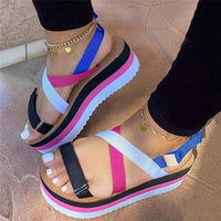 Women Sandals/Wedges - colorful B / 43 / United States