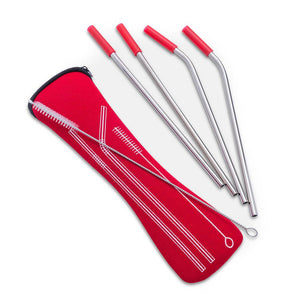 Stainless Steel Straw Kit - Case plus 4 Straws and Cleaning Brush