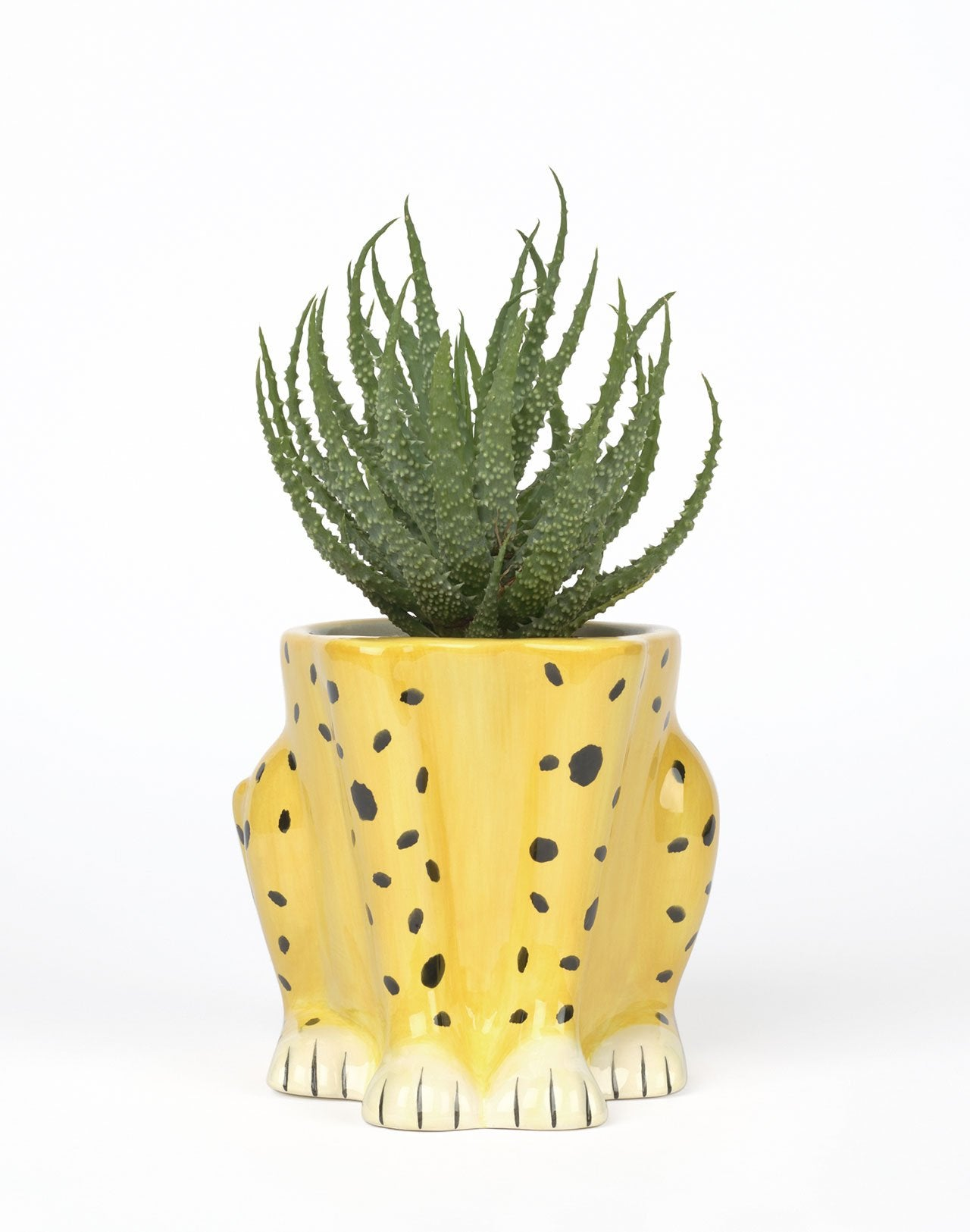 Pot Urban Jungle Cheetah