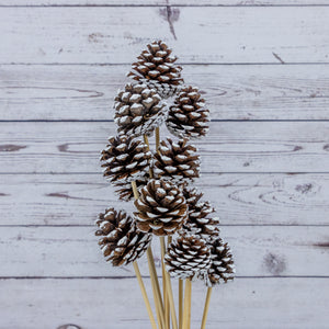 Medium Pine Cones on a Stick