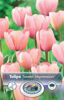 Tulip Sweet Impression - 8PK
