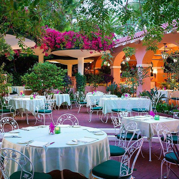 Favorite spot - the garden at the beverly hills hotel
