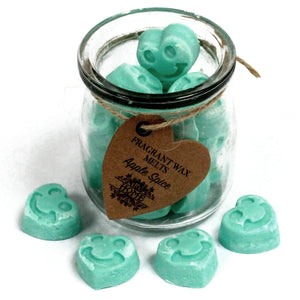 Apple spice wax melts 16 pieces
