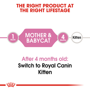 ROYAL CANIN Mother & Babycat Food