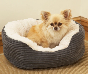 Rosewood Jumbo Cord Dog Bed - Plush