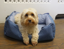 Load image into Gallery viewer, Luxury Cooling Pet Bed