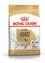 Load image into Gallery viewer, ROYAL CANIN Labrador Retriever Adult Dog Food
