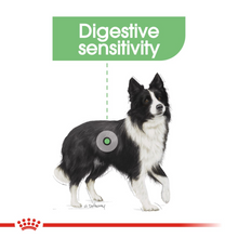 Load image into Gallery viewer, ROYAL CANIN® Medium Digestive Care