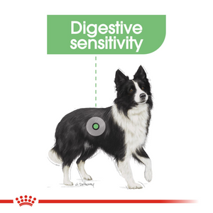 ROYAL CANIN® Medium Digestive Care