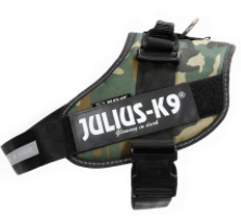 Julius K-9 Black Harness