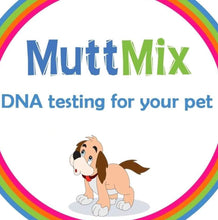 Load image into Gallery viewer, Mutt Mix: Mixed Breed Dog DNA Identification Kit (includes courier costs)