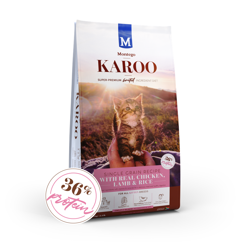 Montego KAROO All Breed Kitten Food - Chicken & Lamb