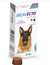 Load image into Gallery viewer, Bravecto Chewable for Dogs
