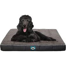 Load image into Gallery viewer, Sealy Cushy Comfy Dog Bed