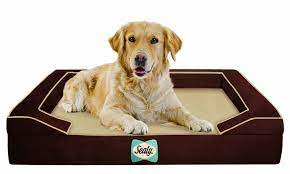 Sealy Lux Orthopedic Dog Bed