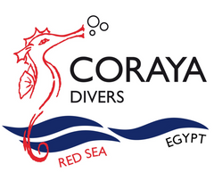 Coraya Divers Red Sea Egypt Logo - Cottonball for b2b business T-shirts manufacturing and printing.