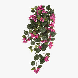 FI6665FU Bougainvillea Hanging Bush