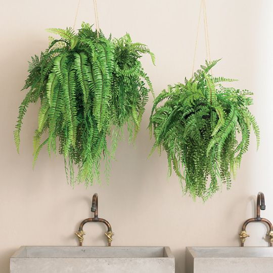 FI8021GR Fern Mixed Ball Hanging