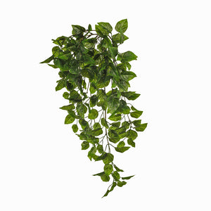 FI7993GR Philodendron Hanging Bush (UV) Green 81cml