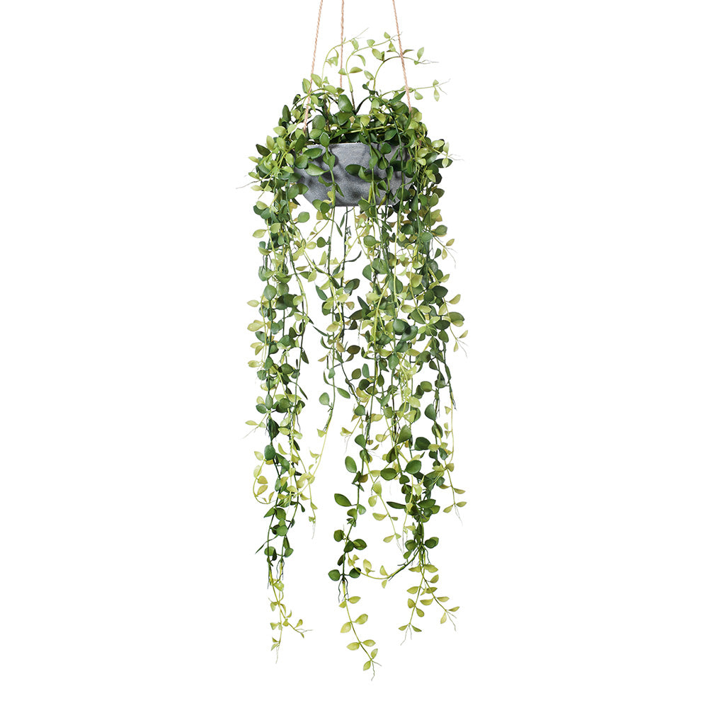 FI8151GR FERN BUTTON HANGING BOWL