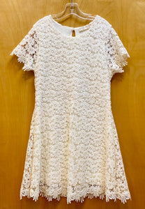Zara Ivory lace Dress