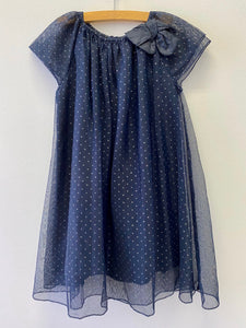 Zara Navy Dress