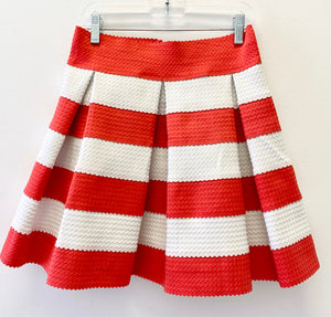 Boutique Stripe Skirt