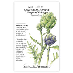 Artichoke Green Globe Improved & Purple of Romagna