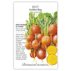Beet Golden Boy