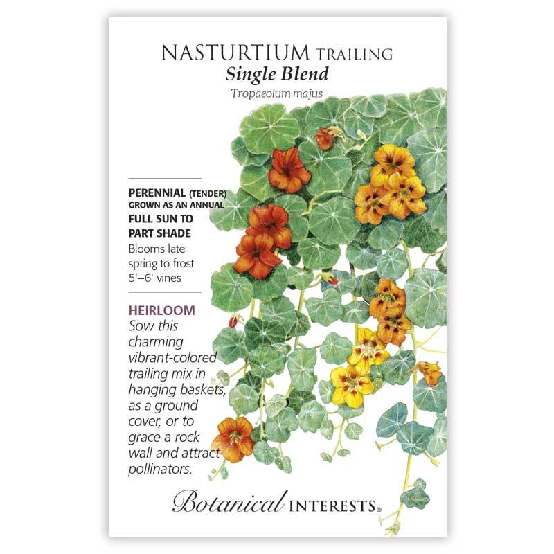 Nasturtium Trailing Single Blend