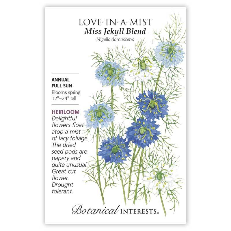 Love-In-A-Mist Miss Jekyll Blend