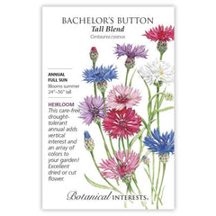 Bachelor Button Tall Blend