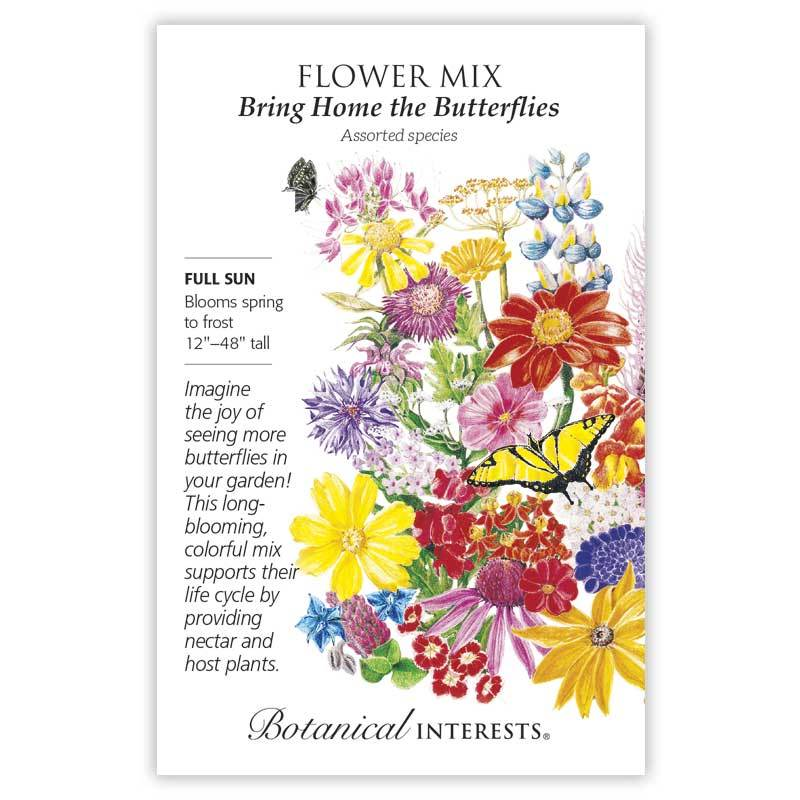 Bring Home the Butterflies Flower Mix