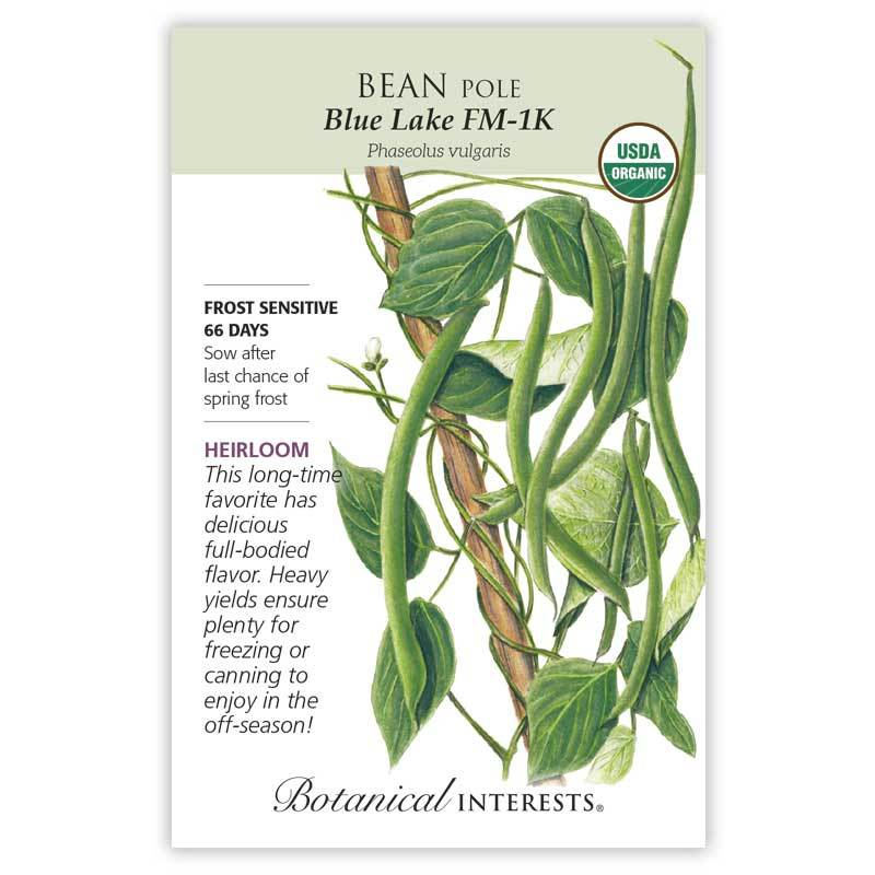 Bean Pole Blue Lake Organic
