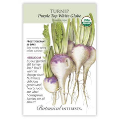 Turnip Purple Top White Globe Organic