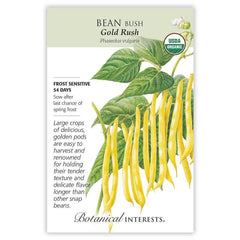 Bean Bush Gold Rush Organic
