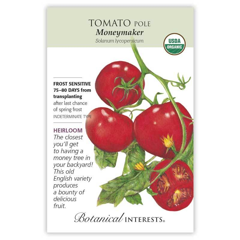 Tomato Pole Moneymaker Organic